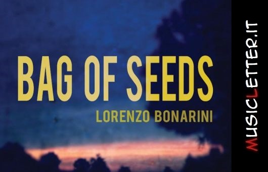 Bag of Seeds, album d'esordio del cantautore veneto Boa