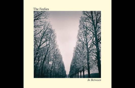feelies-in-between.jpeg