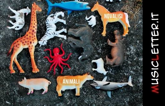 Un disco per l'Europa: Animali di Novalisi