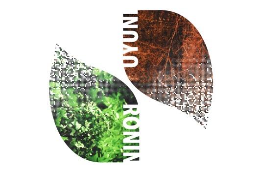 ronin-e-uyuni-split-ep.jpg