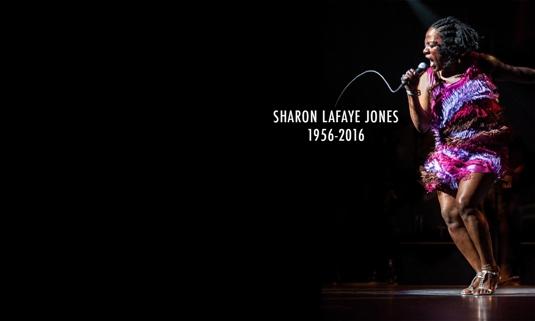 sharon-lafaye-jones-addio.jpg
