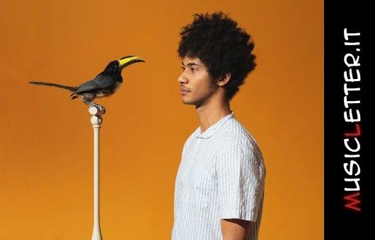Dreaming is Dead Now è l'esordio dell'artista sudafricano-inglese Skinny Pelembe