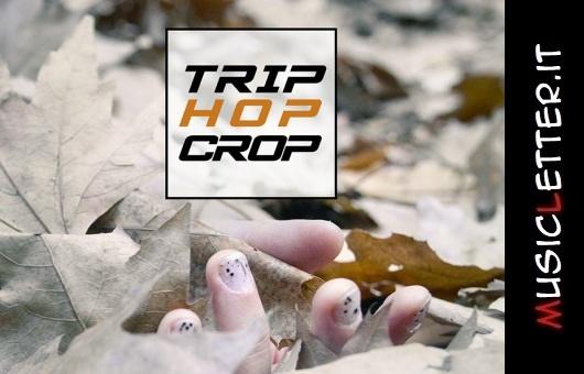 Trip Hop Crop