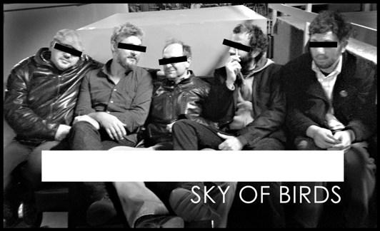 Sky-of-Birds.jpg
